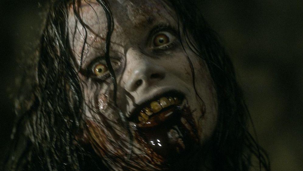 """Horror-Remake """"Evil Dead"""": Im stahlgrauen Wald"""