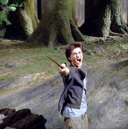 Harry zog den Zauberstab - abgeschlossene Handlung?