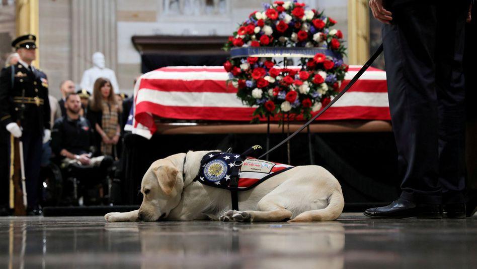 Sully bei einer Zeremonie für den verstorbenen Bush