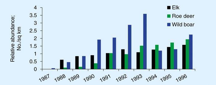 Zahl der Elche (schwarz), Rehe (grün) und Wildschweine (blau) pro Quadratkilometer zwischen 1987 und 1996. Dass die Zahl der Wildschweine zwischen 1993 und 1994 massiv zurückging, führen die Forscher auf die Rückkehr der Wölfe zurück.