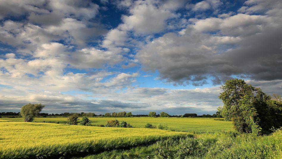 """Landschaft nahe Wisbech(Symboldbild): Der Mann habe jahrelang unter """"extrem schwierigen Bedingungen"""" gelebt"""