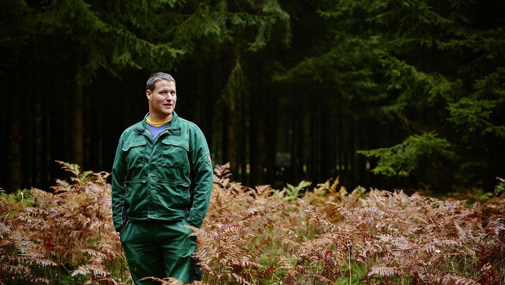 Forstwirtschaft: Das große Gefälle