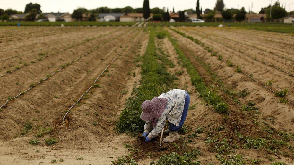 Dürre-Notstand: Den Hahn zugedreht