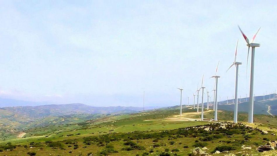 Windpark in Marokko: Traum vom Wüstenstrom für Europa vor dem Aus