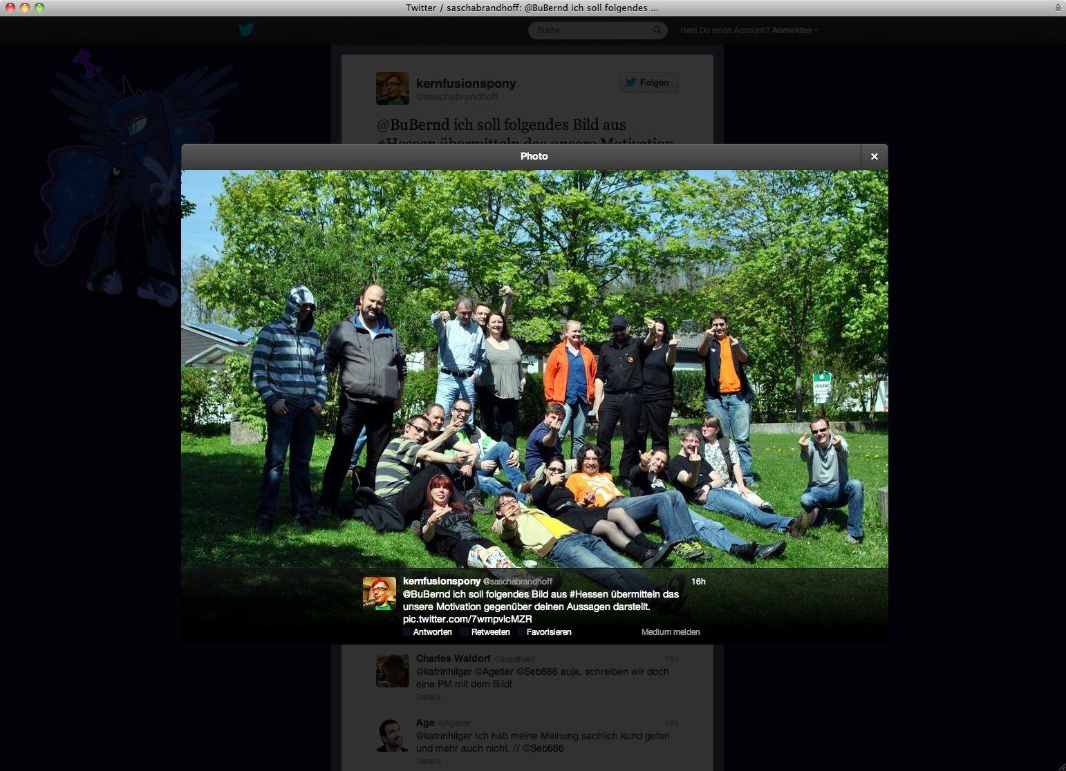 NUR ALS ZITAT Piraten-Partei / Screenshot Twitter