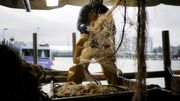 EU und Großbritannien einigen sich auf Fischereiquoten