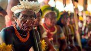Stars fordern Schutz für Brasiliens Ureinwohner