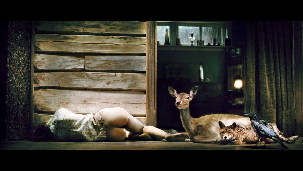 """Lars von Trier: """"Sex, Gewalt, Wahnsinn"""""""