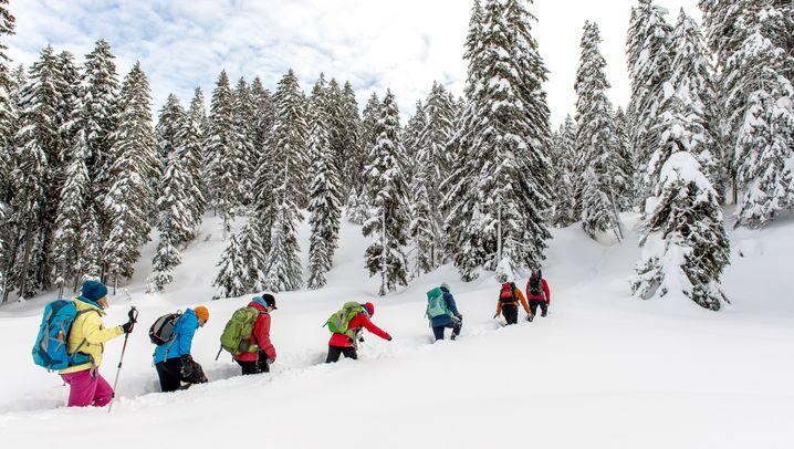 Tirol: So schön ist Weitwandern im Winter