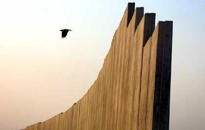 """""""Separationswall"""": Nur Vögel überwinden ihn mühelos"""