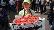 Das sind die Traditionen in Wimbledon