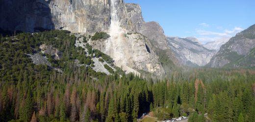 Manche Nationalparks stoßen mehr CO₂ aus, als sie absorbieren
