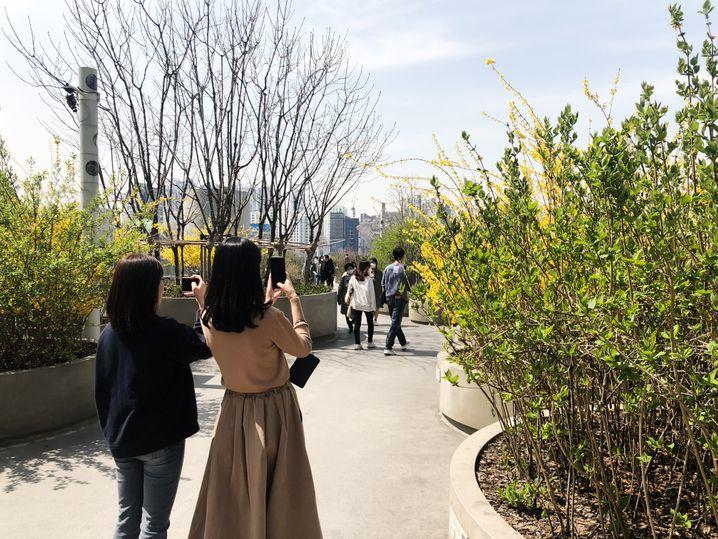 Sonnenschein in Seoul