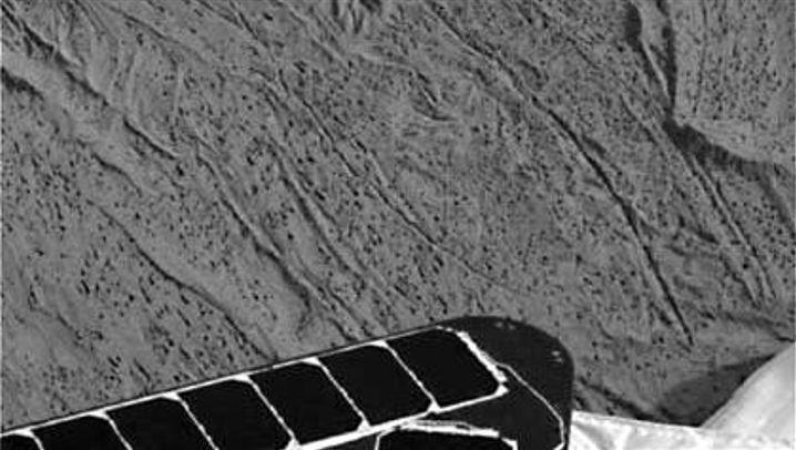Nasa in Sektlaune: Bilder von der zweiten Marssonde