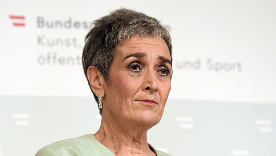 Ulrike Lunacek, Kulturstaatssekretärin von Österreich