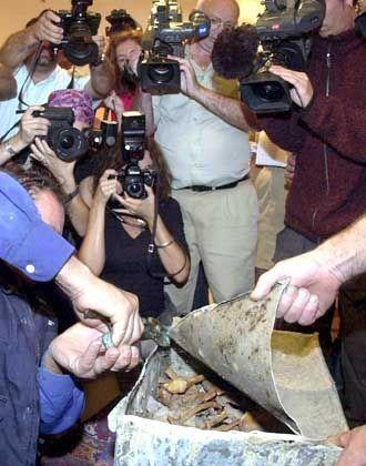 Columbus-Knochen: In Sevilla wurden Proben aus den Gräbern von Christoph und seinem Bruder Diego Columbus entnommen