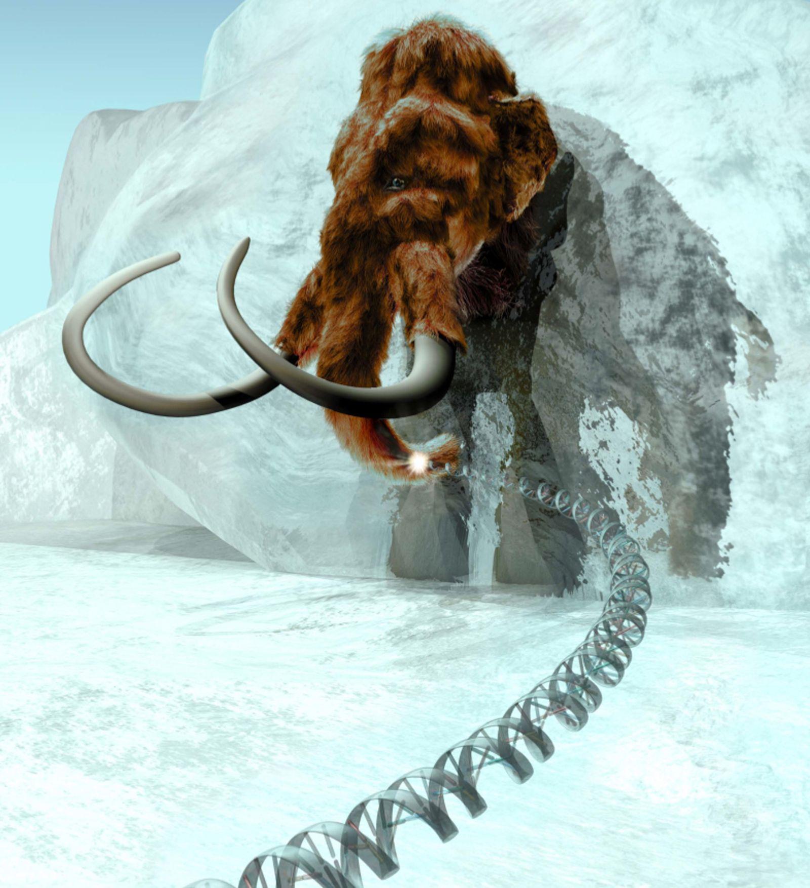 Mammut / Genom / Gen