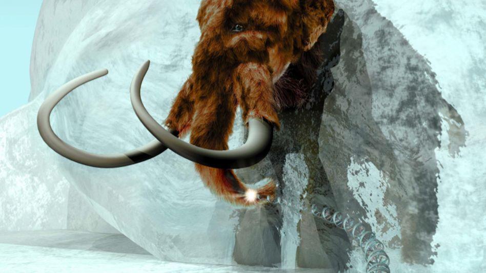 Wollhaarmammut: Seit etwa 10.000 Jahren ausgestorben und trotzdem präsent