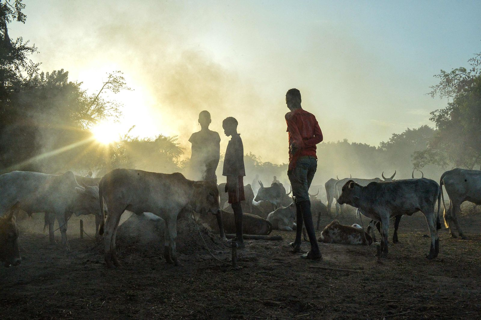 SOUTH SUDAN-ECONOMY-AGRICULTURE