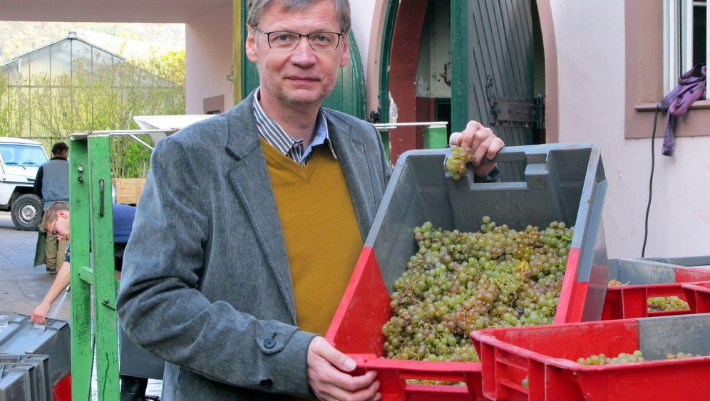 Weinregion Saar: Ein Quizmaster als Winzer