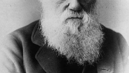 Charles Darwin: Heiratete seine Cousine ersten Grades
