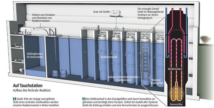 Aufbau der Nuscale-Reaktoren
