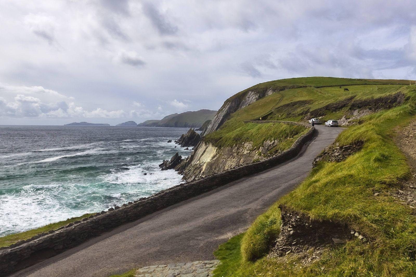 Kuestenstrasse an der Felskueste der Dingle Halbinsel Irland County Kerry Dingle Halbinsel Dingl