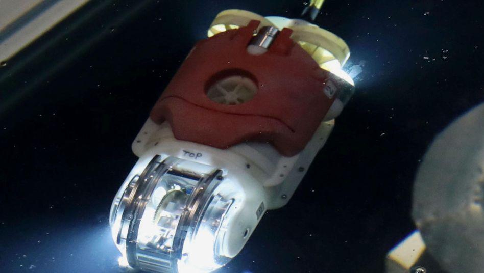Unterwasser-Roboter in Fukushima