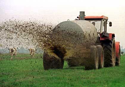 Bauer bringt Gülle aus: Umstrittene Düngemethode