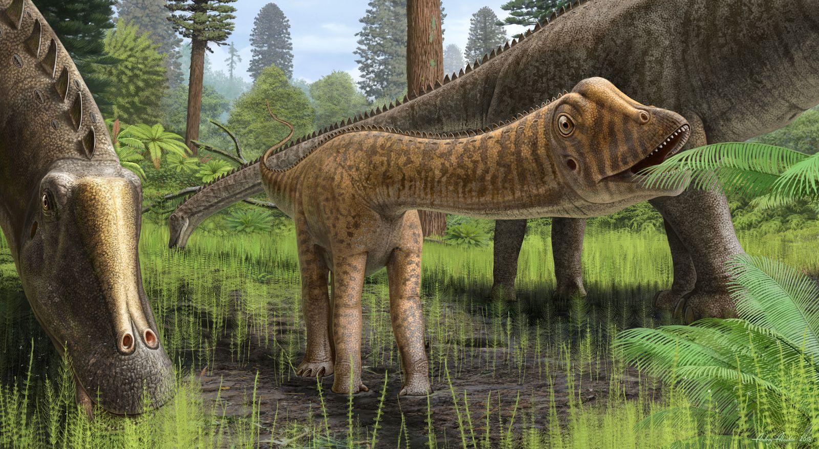 EINMALIGE VERWENDUNG Diplodocid Schaedel/ Dinosaurier/ EMBARGO