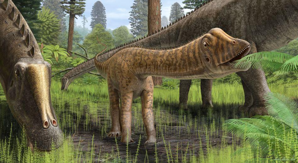 Sauropoden (Künstlerische Darstellung)