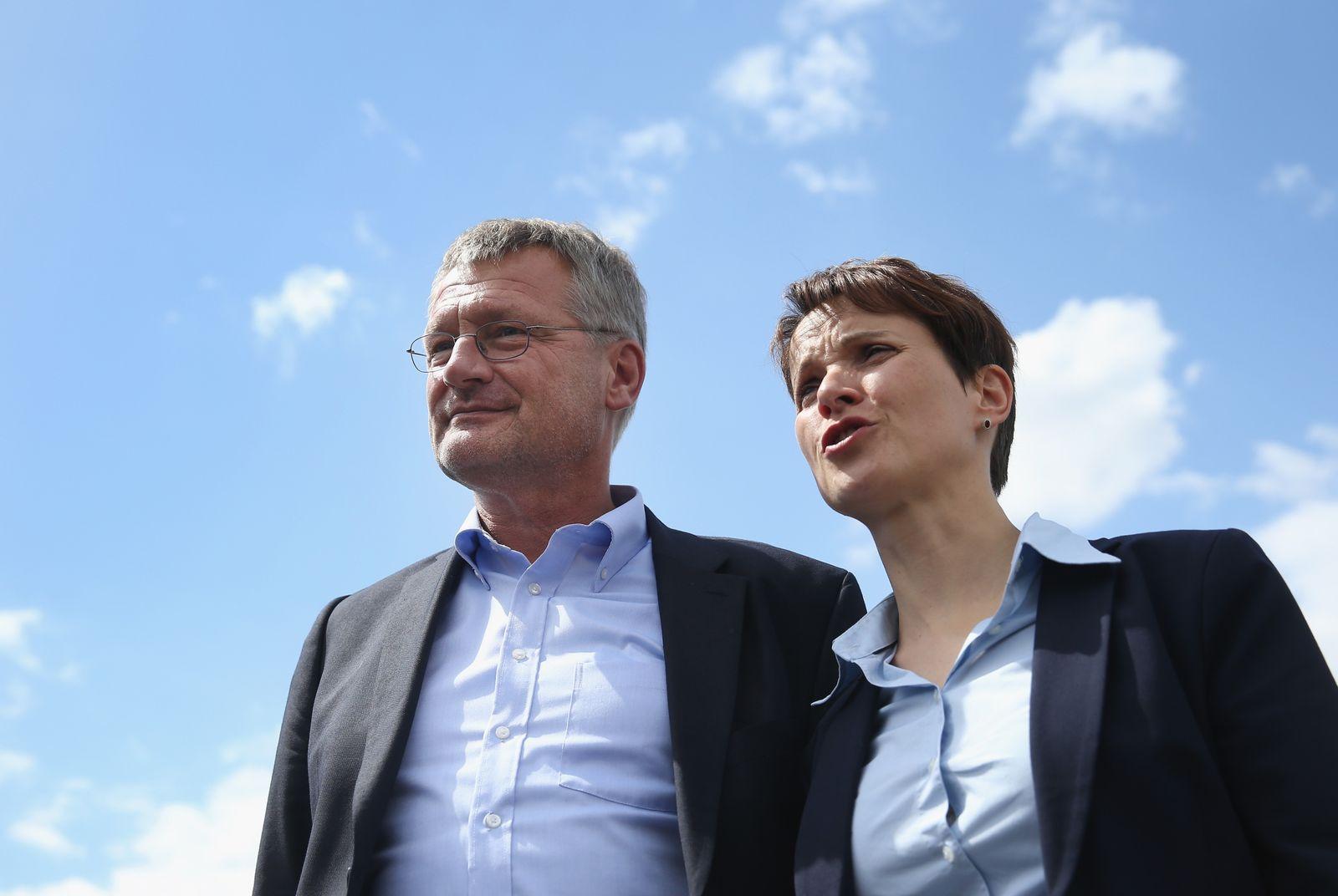 Joerg Meuthen / Frauke Petry
