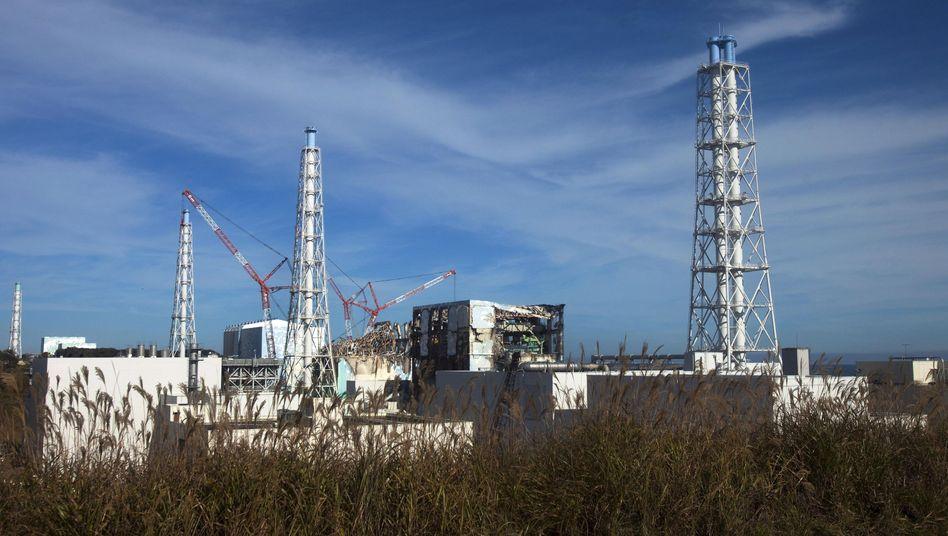 Atomkraftwerk Fukushima Daiichi: Die Direktoren des Betreibers Tepco müssen gehen