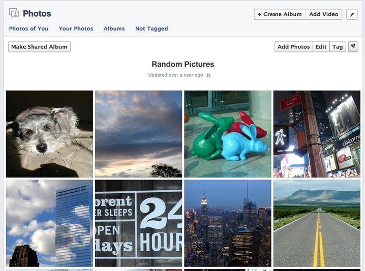 Random Pictures: kopulierende Karnickel und viele Erinnerungen