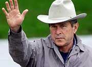 Befehlshaber Bush: Neue Regeln für die Cyber-Schlapphüte