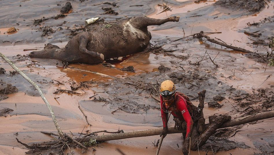 Bergwerks-Katastrophe in Brasilien: Angst vor giftigem Schlamm
