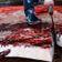 Warum Japan jetzt wieder Wale jagt