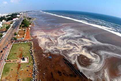 Südindische Stadt Madras: Tsunami 700 km/h schnell