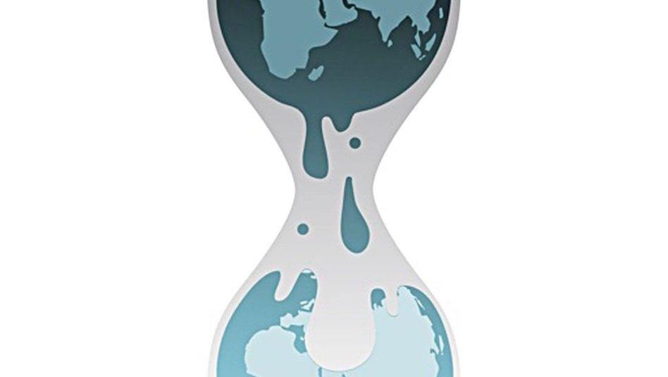 """WikiLeaks-Logo: Visa-Zahlungen wurden """"vorübergehend"""" eingestellt"""