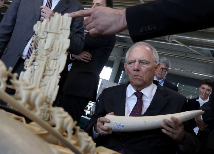 Schäuble mit sichergestelltem Elfenbein