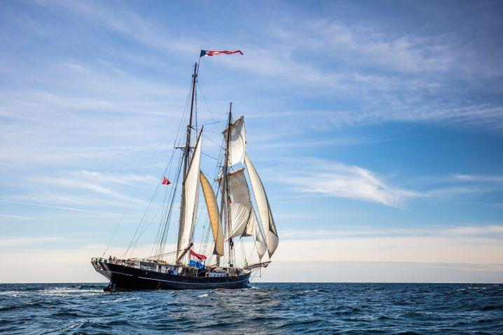"""Segelschiff """"De Wylde Swan"""""""