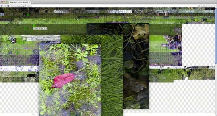Gartenscan: 484 Quadratmeter Natur, A4-Parzelle für A4-Parzelle gescannt