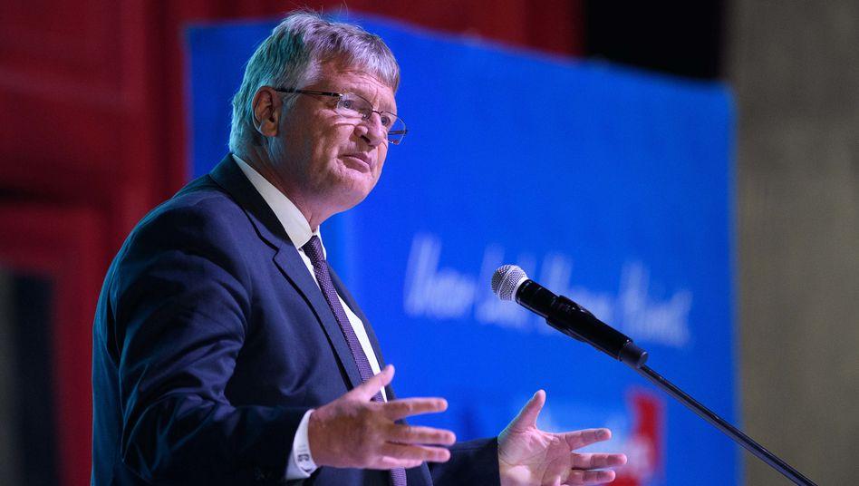 AfD-Chef Meuthen (beim Landesparteitag in Braunschweig)