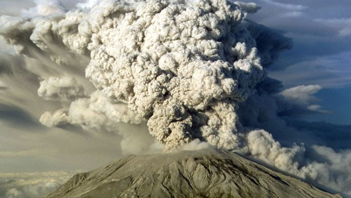 Mount St. Helens: Langsame Rückkehr des Lebens