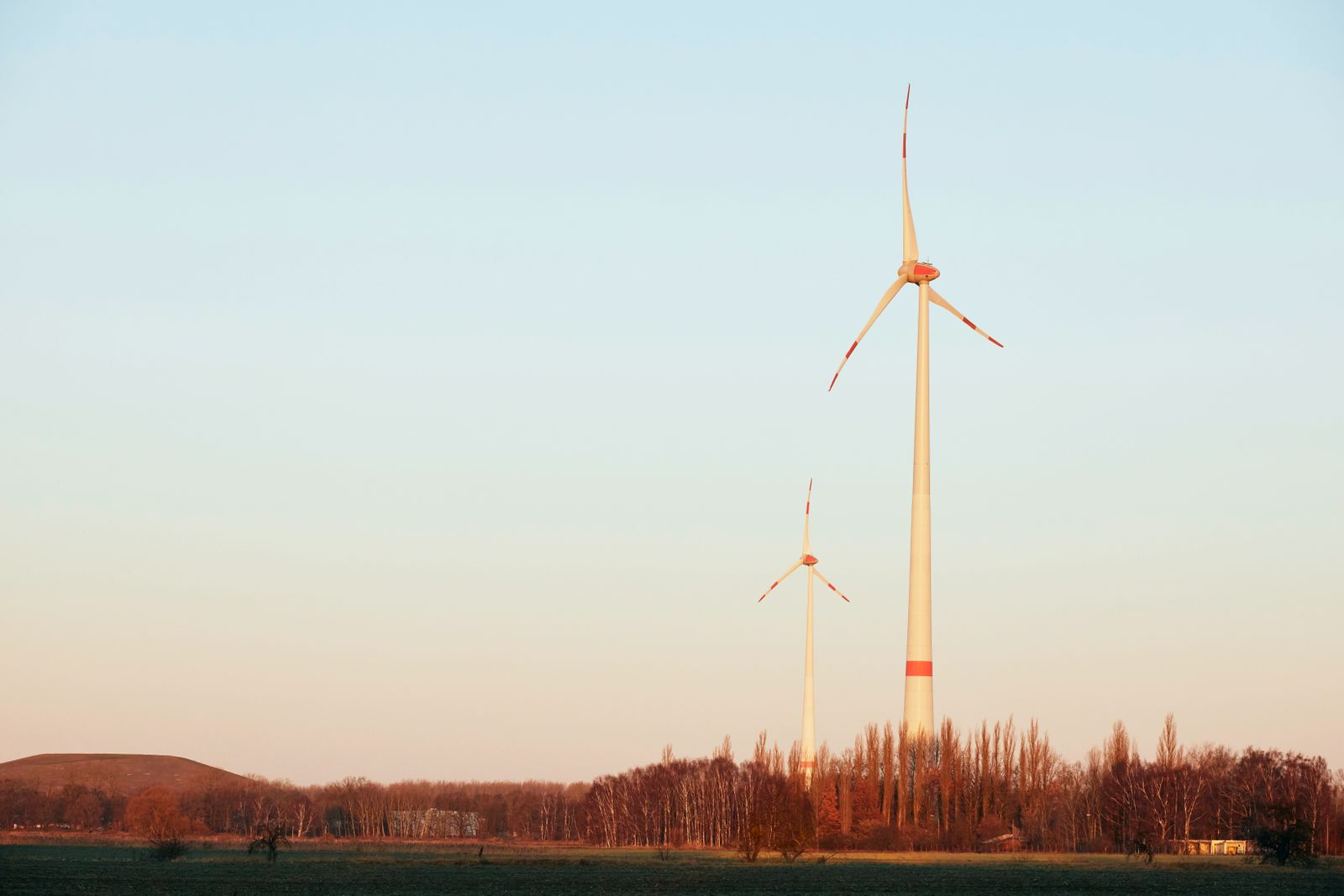 Windkraft - Vogelschutz