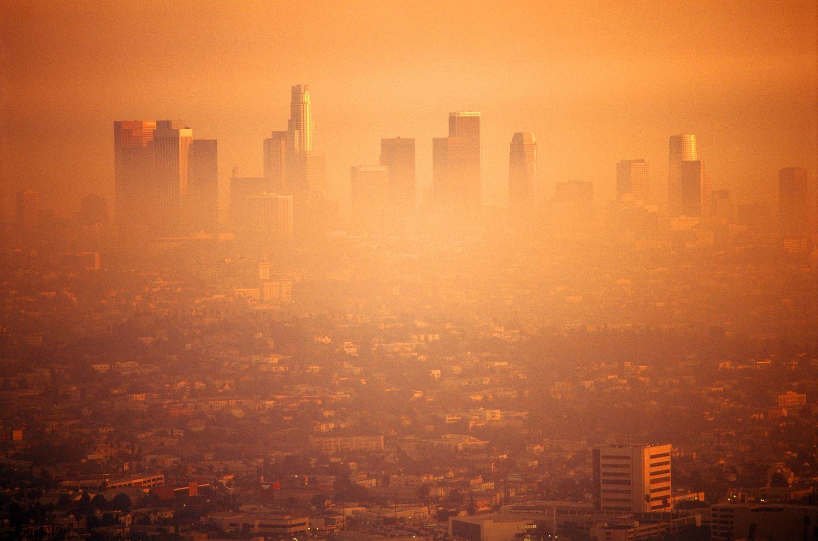 NICHT MEHR VERWENDEN! - Smog / Los Angeles