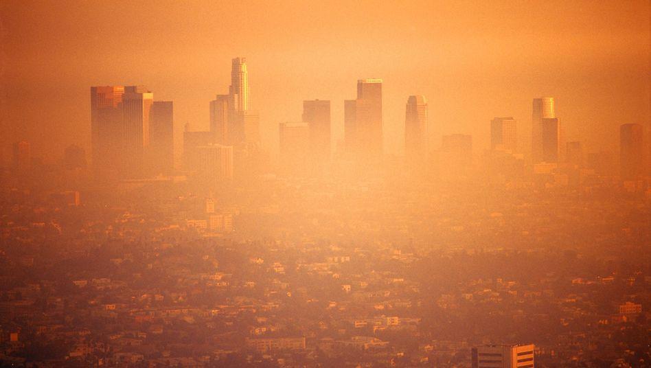 Smog über Los Angeles: Treibhausgase wärmen die Luft