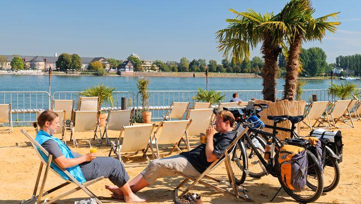 Frühlings-Fahrradtouren an Flüssen: Von Elbe bis Tauber
