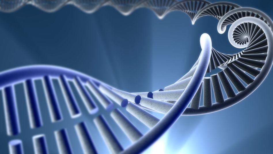 DNA-Strang (Illustration): 80 Prozent des Erbguts erfüllen eine Funktion