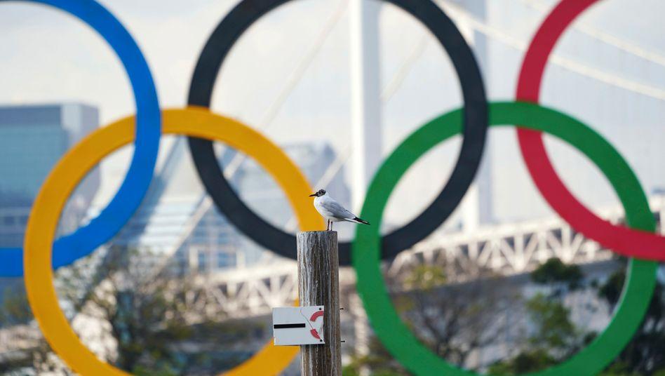 Die olympischen Ringe symbolisieren die Universalität der olympischen Idee